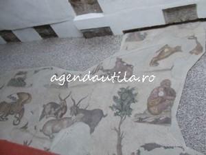 muzeul mozaicurilor1