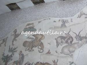 muzeul mozaicurilor6