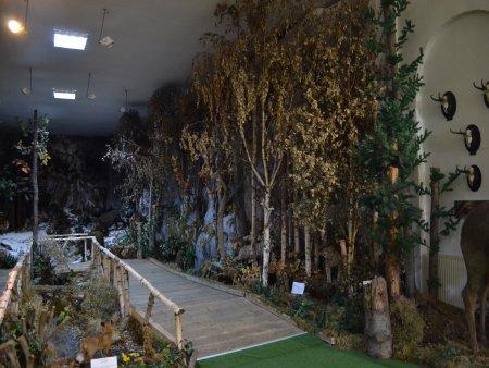 muzeul natura vaii teleajenului 2
