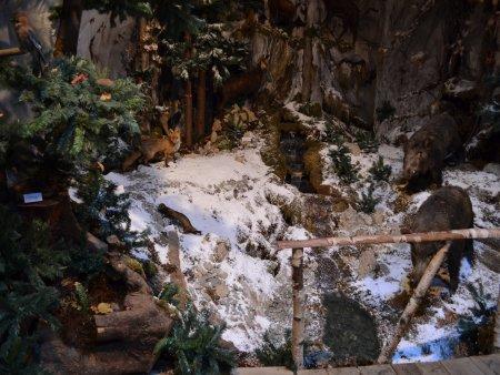 muzeul natura vaii teleajenului 3