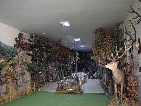 muzeul natura vaii teleajenului 6