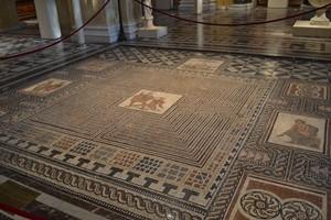 greco-romane 6