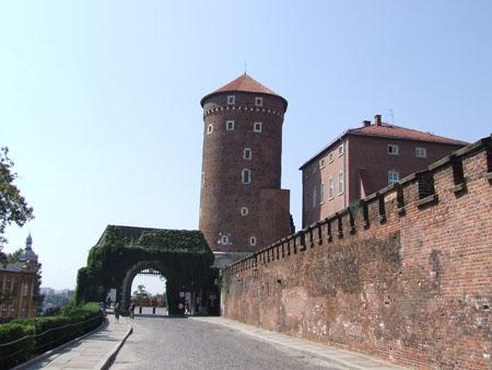 Obiective turistice Cracovia castel wawel 1