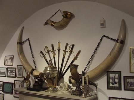 muzeul de vanatoare recomandari turistice in varsovia