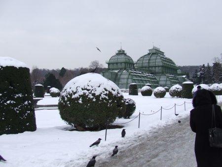 palatul schonbrunn 2 city break la viena